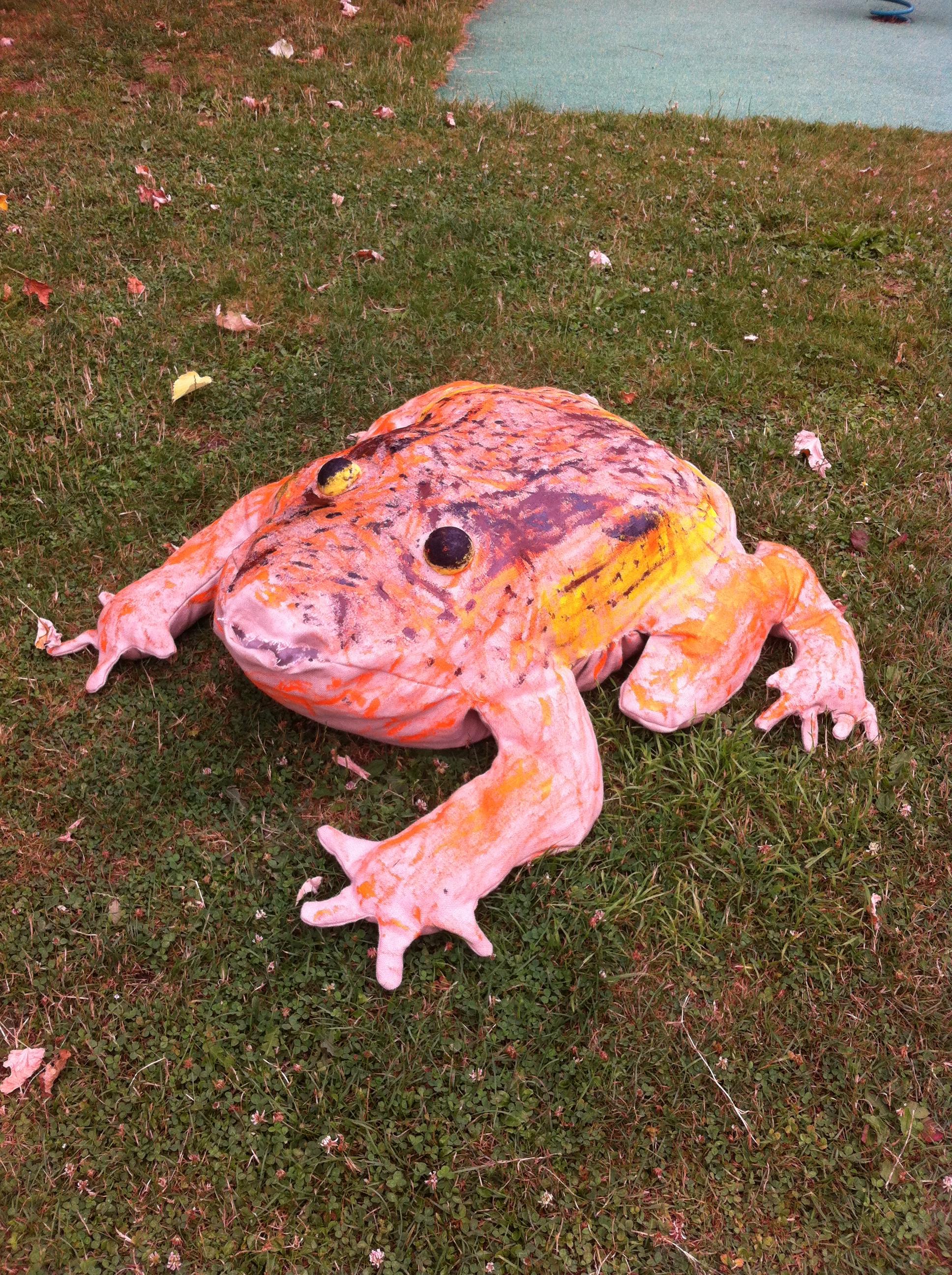 La grenouille rousse ( (ALSH Molineuf))