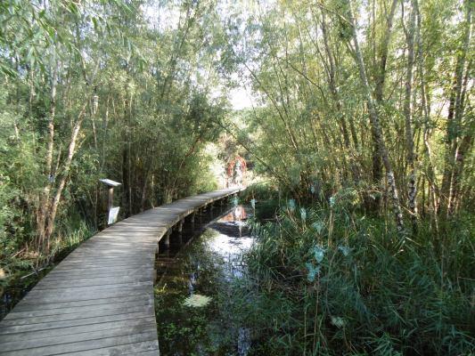 Promenade-des-Rinceaux