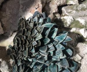 Les céramiques de Anne Deberly exposées dans la cave de Marleine